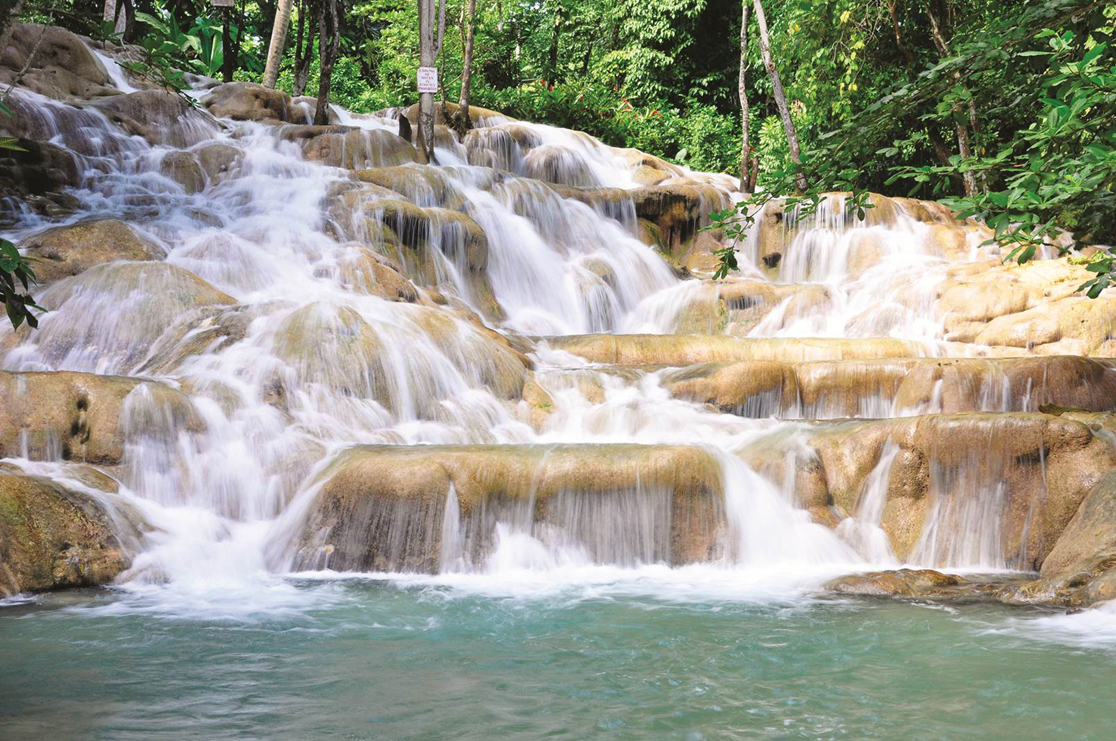 Best Excursions in Jamaica